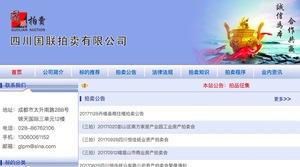 四川国联拍卖网站建设案例
